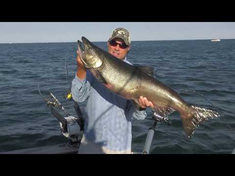 Lake Ontario Salmon On The Water's Angling Adventures Season 14 Ep 6