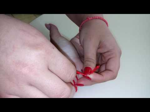 Как правильно одеть красную нить на запястье