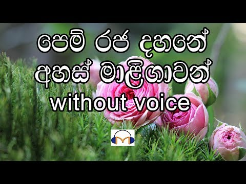 Pem Raja Dahane Karaoke (without voice) පෙම් රජ දහනේ