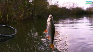 Roach On The Waggler in Winter