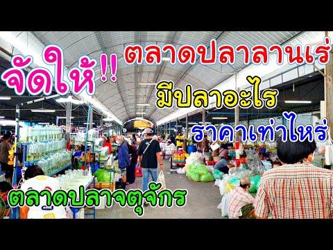 """""""ตลาดปลาลานเร่"""" มีปลาอะไร ราคาเท่าไหร่ , Jatujak Fish Market"""