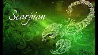 Horoscop Urania - Zodia Scorpion 21 - 27 noiembrie 2020 - Emisiunea Uranissima