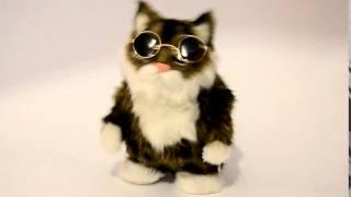 Игрушка Кот, механизированная, повторяет слова, (размер: 16см)