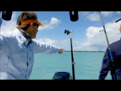 Inshore Kite Fishing