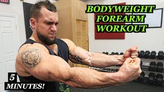 Intense 5 Minute At Home Forearm Workout #2