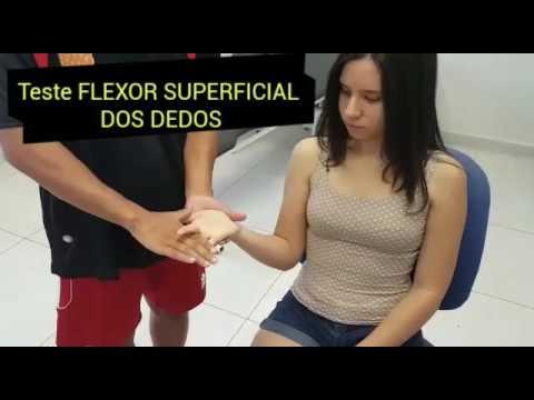 Teste FLEXOR SUPERFICIAL DOS DEDOS