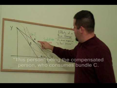 """measuring hicksian welfare changes from marshallian The marshallian theory of economic welfare is based on his tool of consumer s   he explains the consumer's surplus from a given change in price as the area   hicks, this """"marshall's measure"""" of the consumer's surplus """"involves nothing more ."""