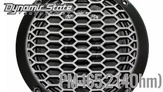 Обзор эстрадных СЧ Dynamic State PM 165 2