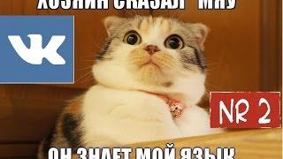 Смешные мемы/приколы вк{вконтакте}№2