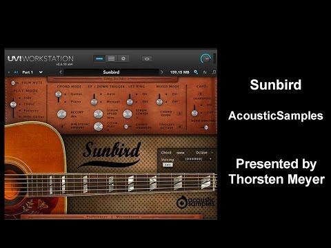Sunbird from AcousticSamples