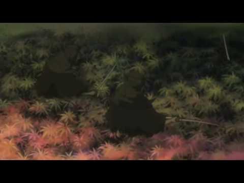 Mushen - Room Temperature Liquid Plastic in a Swamp