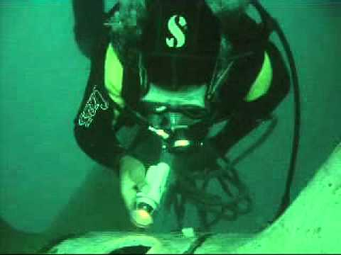 Underwater Security Inspection Service 809-261-5843