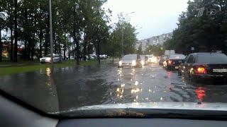 Смотреть видео В Санкт-Петербурге ликвидируют последствия мощного циклона. онлайн