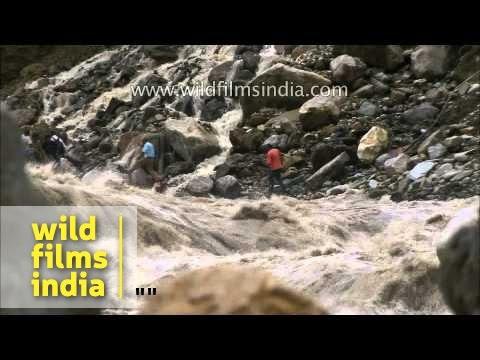 Worst of the Uttarakhand floods: a compilation of frightening imagery