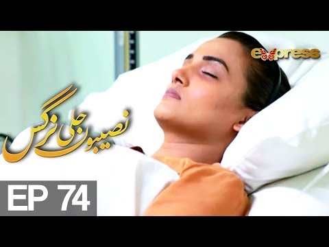 Naseebon Jali Nargis - Episode 74 - Express Entertainment |