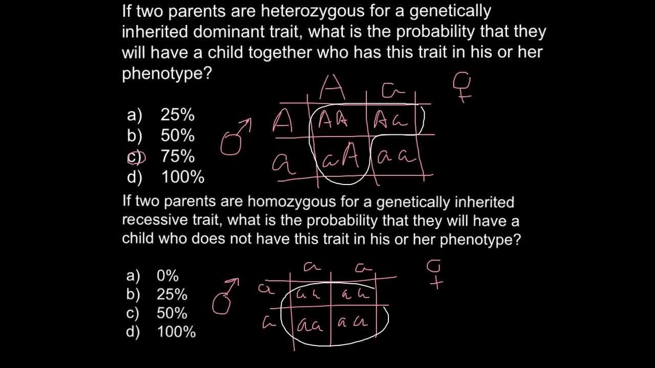 what produces male sex hormones