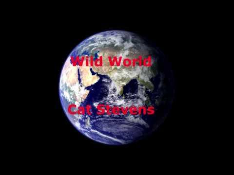 Wild World  - Cat Stevens - with lyrics