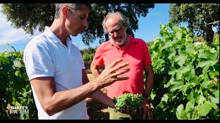 Harry's Farm visits Chateau Léoube to see how they create their Rosé wine