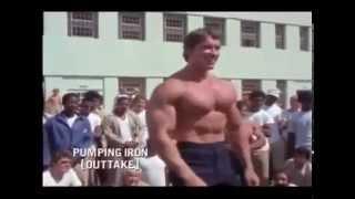 Lo Mejor de Arnold Schwarzenegger