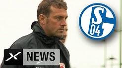 Wird Markus Weinzierl Trainer beim FC Schalke 04?   Erfolgscoach des FC Augsburg führt Gespräche