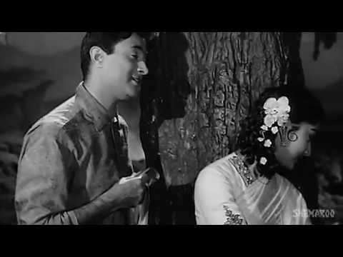 Abhi Na Jao Chhod Kar   Dev Anand   Sadhana   Hum Dono   Evergreen Bollywood Songs   Jaidev   You