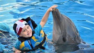 Dolphin Amusement Park for Kids Video for Children
