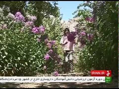 Iran Deh Bala village, Yazd province روستاي ده بالا استان يزد ايران