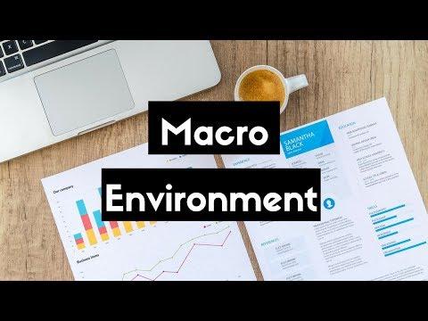 Macro Environment (Hindi) B.COM/M.COM, NET/SET/JRF