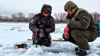 ОСТАВИЛИ КОМБАЙНЫ БЕЗ ПРИСМОТРА И ВОТ ЧТО ПРОИЗОШЛО! Зимняя рыбалка на балансир. Рыбалка на комбайны