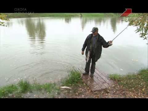 зимняя рыбалка на карпа - 2013-11-11 07:46:19
