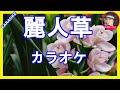 麗人草(れいじんそう) 長保有紀  カラオケ With  Romaji  KARAOKE