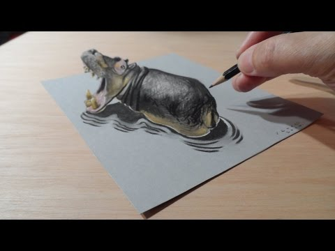 Drawing a Hippo, Trompe-l'oeil by Vamos