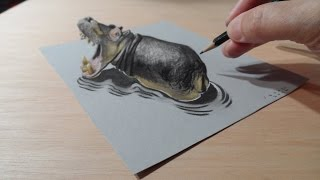 Drawing a Hippo, Trompe-l