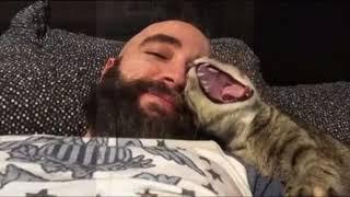 Почему кошки больше любят мужчин/ Man and cat