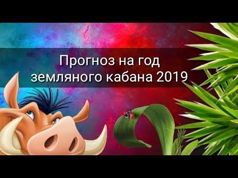 ПРОГНОЗ НА ГОД ЗЕМЛЯНОГО КАБАНА 2019