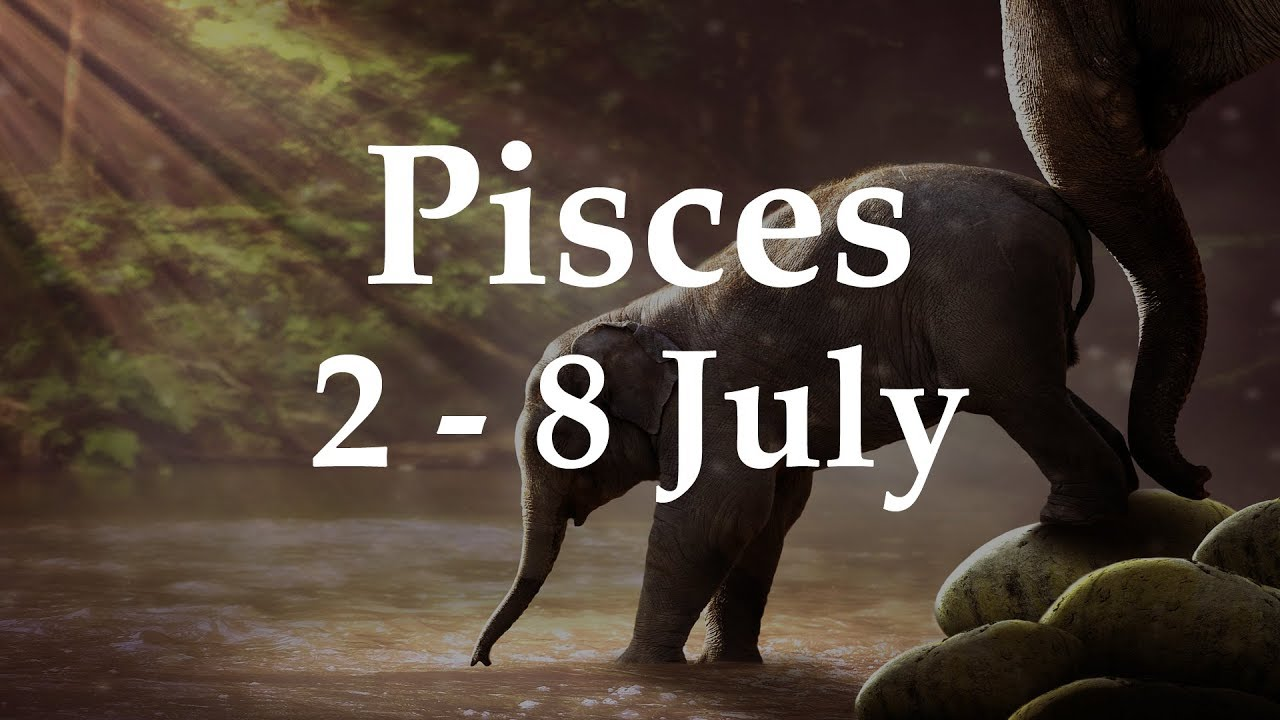 pisces tarot weekly 2 to 8