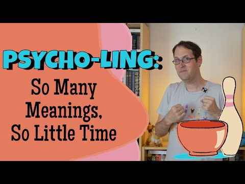 Why Are There So Many Meanings? Ambiguity