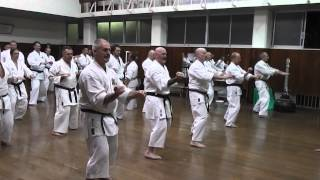 Sanchin Kata Jundokan 2013