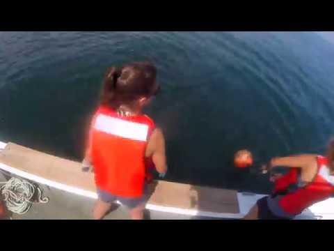 Baited Remote Underwater Video Surveys (BRUVS) in Maine