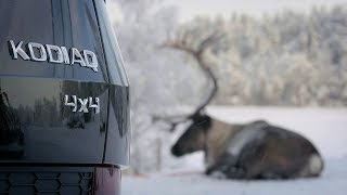 ŠKODA KODIAQ 4×4: полноприводный SUV. Зимняя реклама Шкода Кодиак. Прага Авто