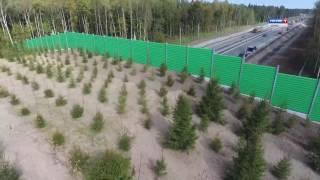Мост для животных. Как выглядит первый в России Экодук