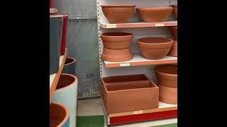 Питомник растений на Северном Кипре Что сажают на Кипре Во сколько обходиться красивый сад
