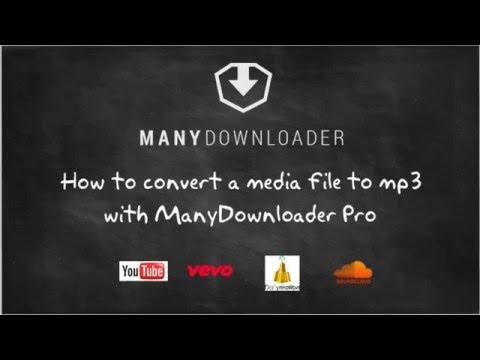 ManyDownloader - convert a media file to mp3 ?