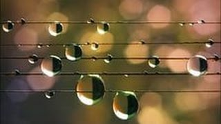 Лады народной музыки. Заключительный урок