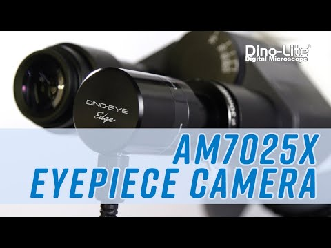 Dino-Eye AM7025X Edge Series 5MP Eyepiece Camera (2020)