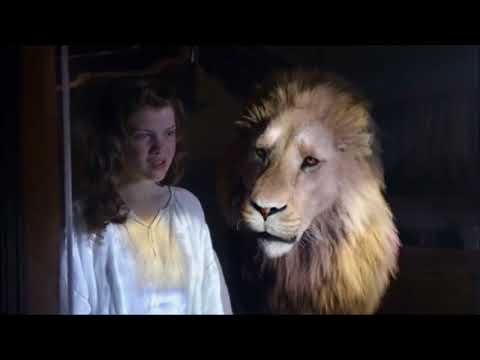 Aslan's Wisdom: 'You doubt your value. Don't run from who you are.'