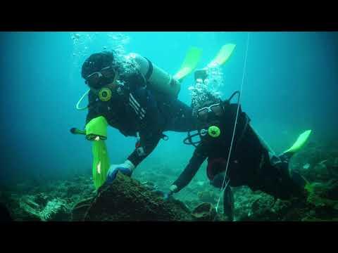 Bidong Dive - Marine Sciences and Marine Biology students