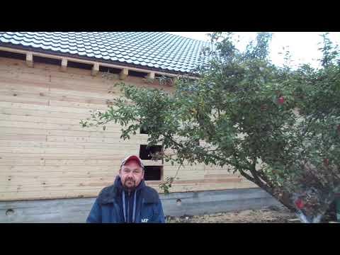 Дом из бруса в Чехове