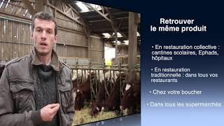 Viande bovine : Ecla 53 veut lancer sa marque
