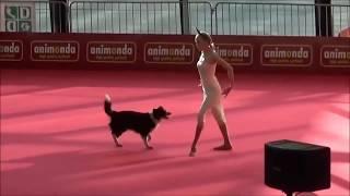 Собака и Гимнастка.  Отличное Парное Выступление. Наши меньшие братья прекрасны